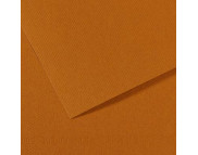 """RR Бумага для пастели """"MI-TEINTES®"""" Canson 160г  50х65см КОРИЧНЕВЫЙ СВЕТЛЫЙ(502)"""